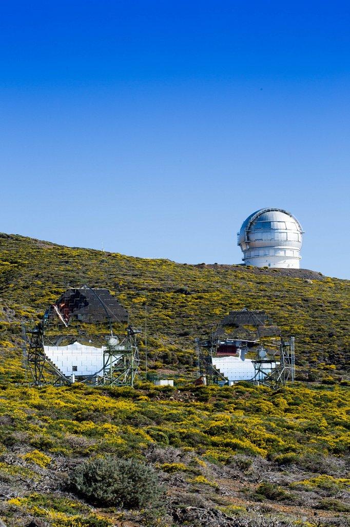 The magic Telescopes of Roque